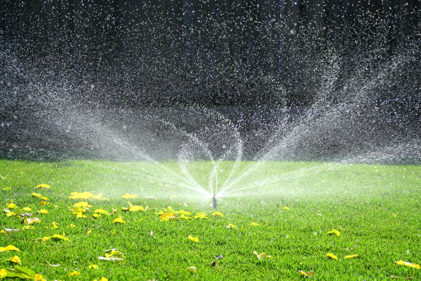 Sprinkler Systems Chadron Lawn Care Mowing Weed